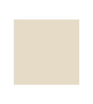 Agnès Giraud-Passot, auteur et biographe à Lyon