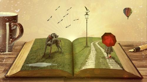 Livres d'une vie